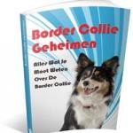 Border Collie Geheimen ervaringen (Henk Bakker)