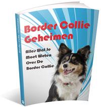 border collie geheimen ervaringen